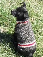 Boy Friend Dog Sweater