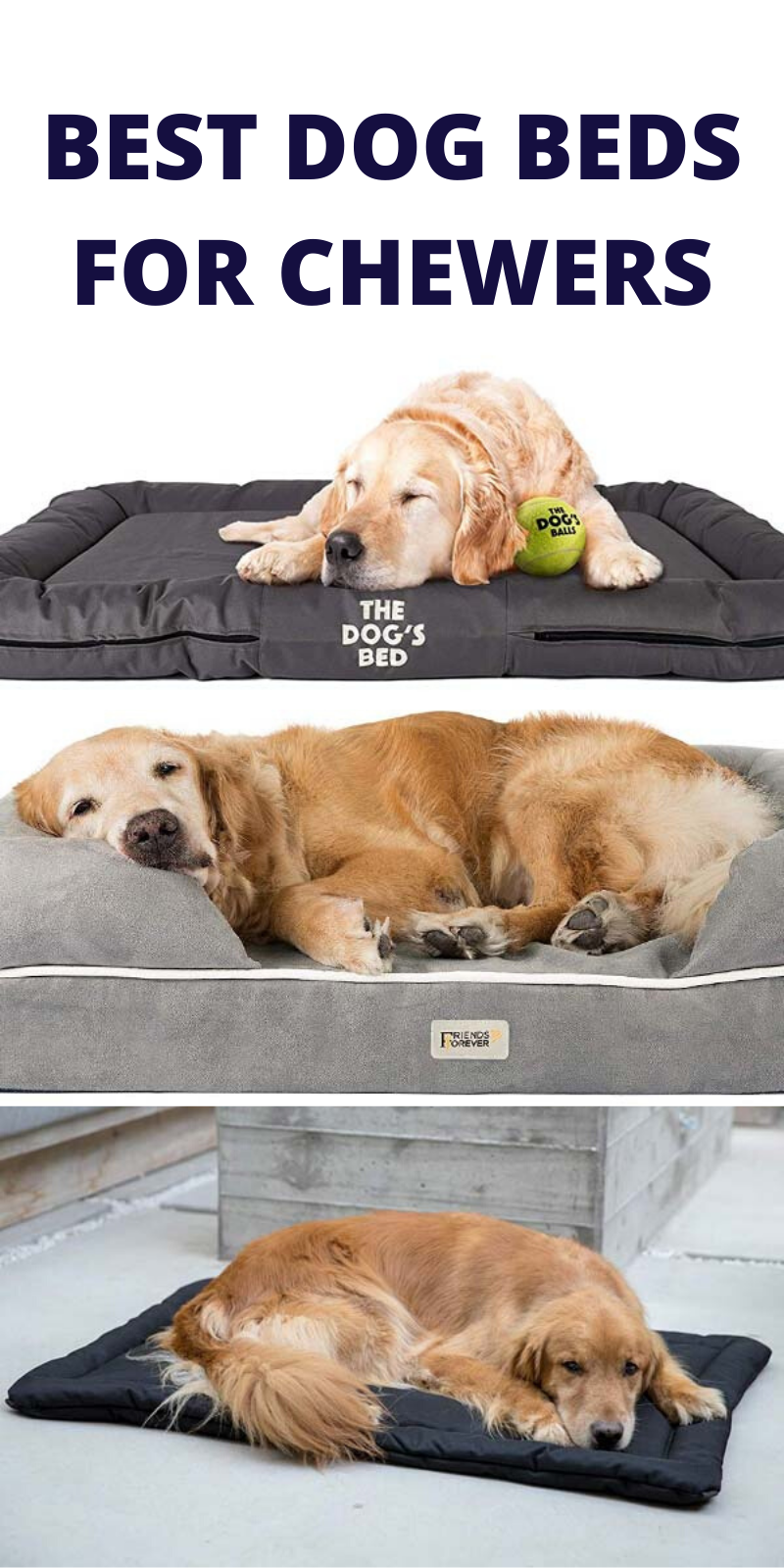 Best Beds For Dogs That Love to Chew | Dog bed, Cool dog ...