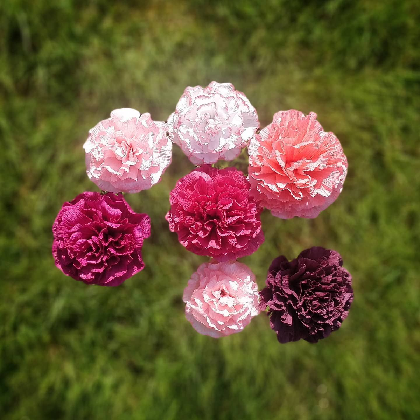 The Beauty Of Paper Flowers Long Lasting Always In Season No Watering Required And No Worries About Pes In 2020 Beautiful Flowers Crepe Paper Flowers Paper Flowers