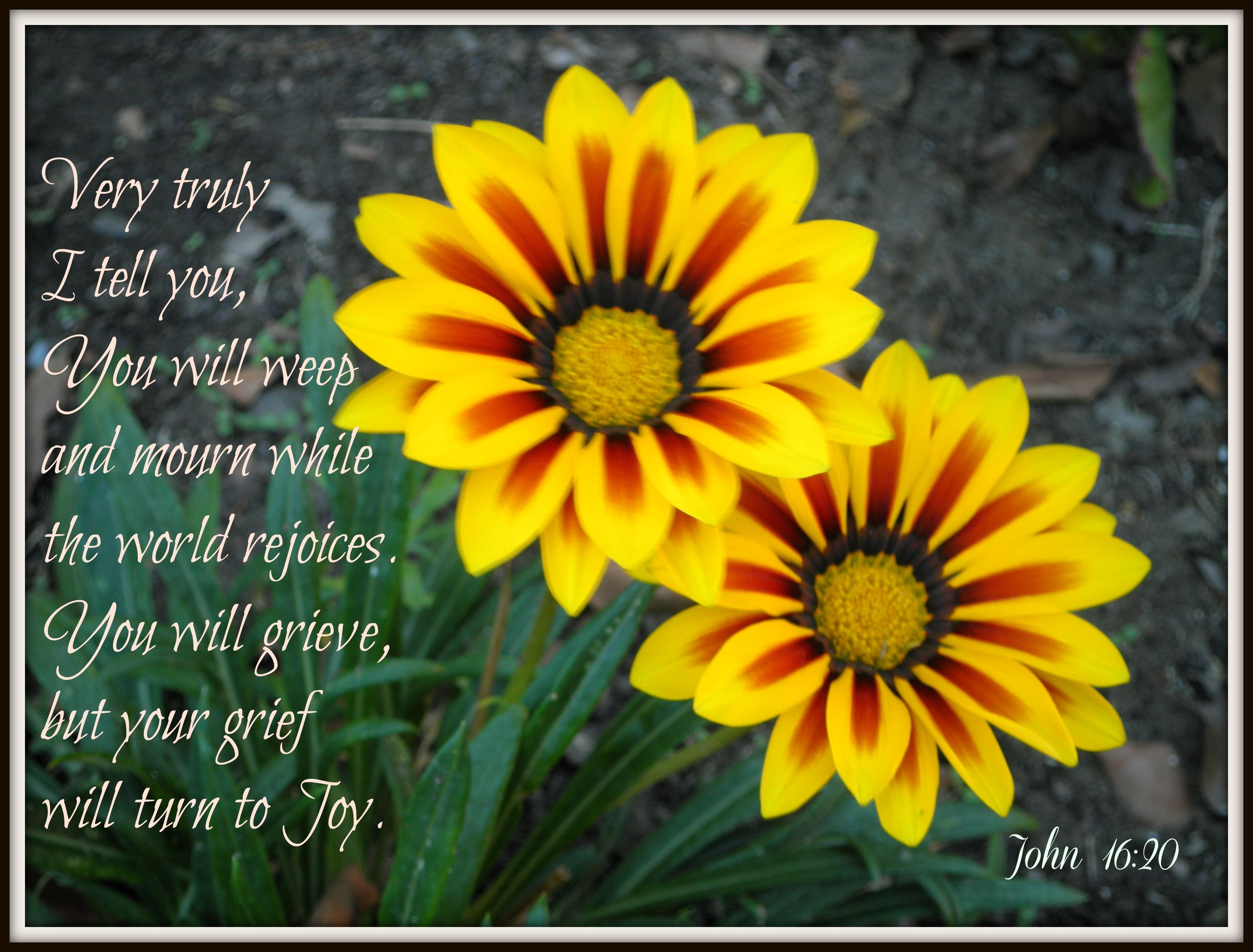 25 Encouraging Scripture Verses For Those Who Are Grieving Met