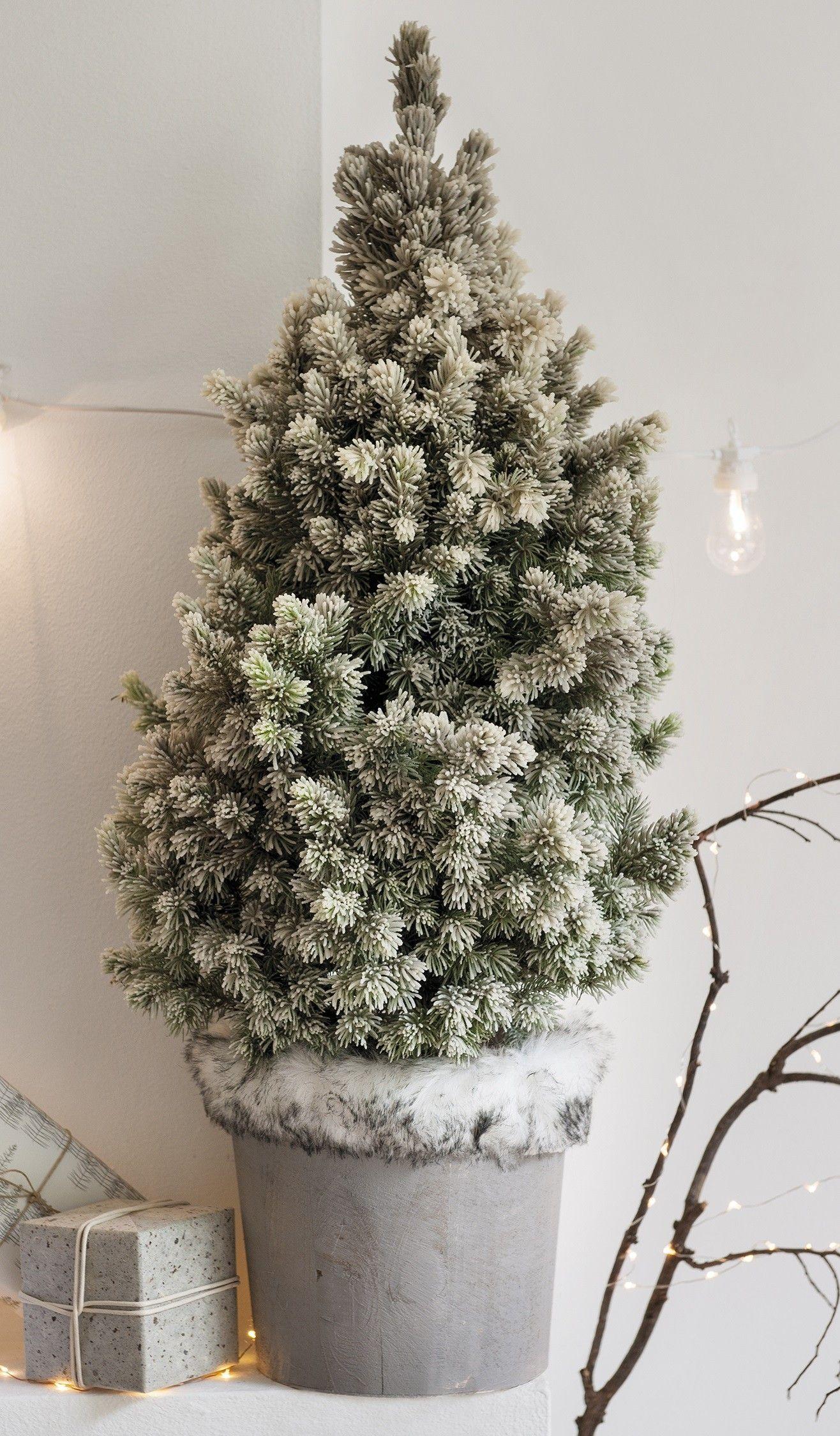 Kerstboom In Pot.Wax Kerstboom In Pot H 70 Cm D 22 Cm Wensenlijstje
