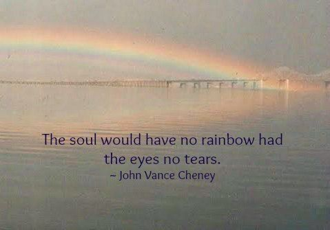 Rainbow had the eyes no tears  #Grief #Quotes | my heart