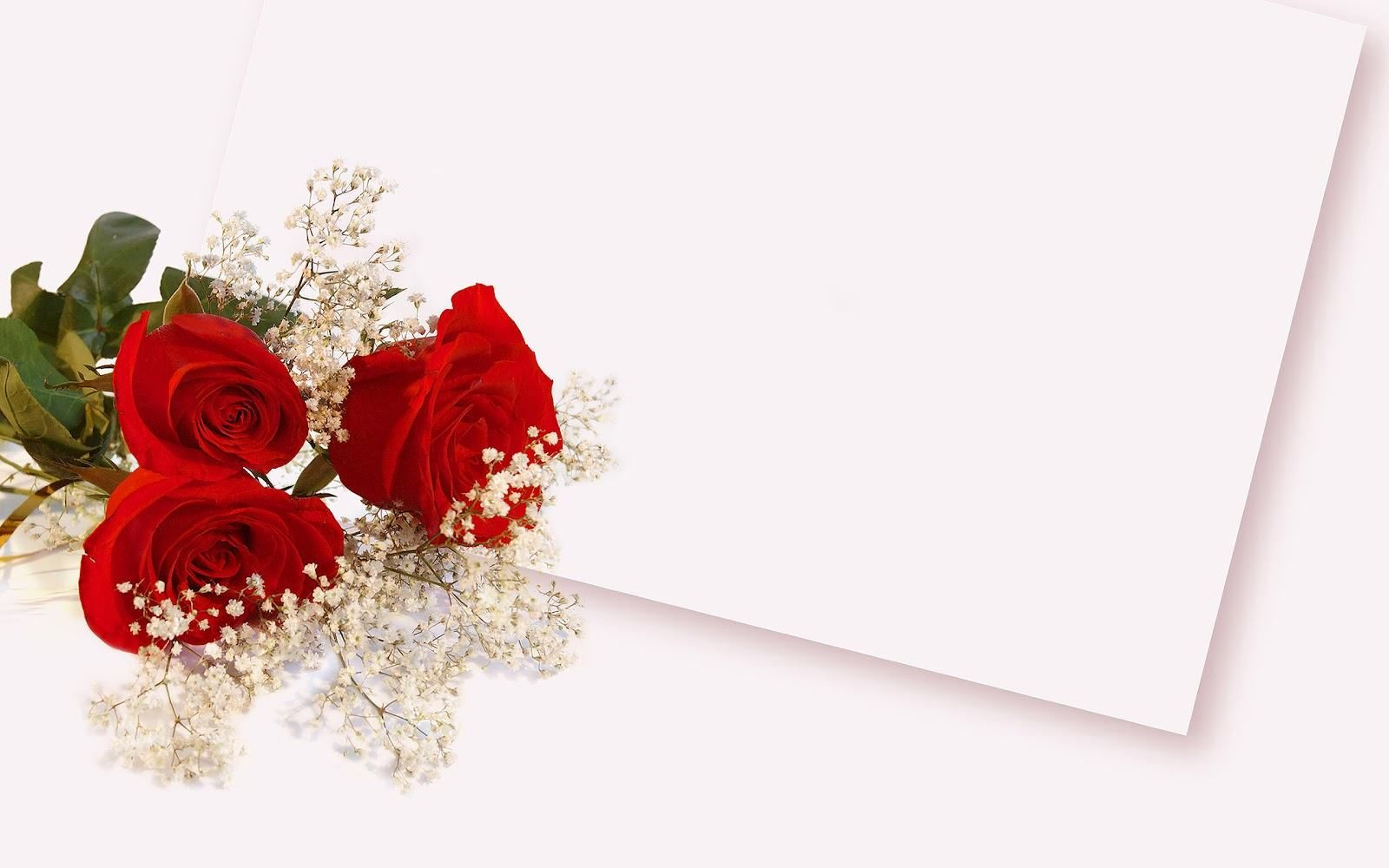 Backgrounds Red Roses Google Zoeken Plum Wedding Flowers Wedding Background Wallpaper Flower Background Wallpaper