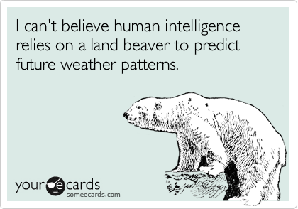 Groundhog Day Ecards Funny Funny Law Quotes
