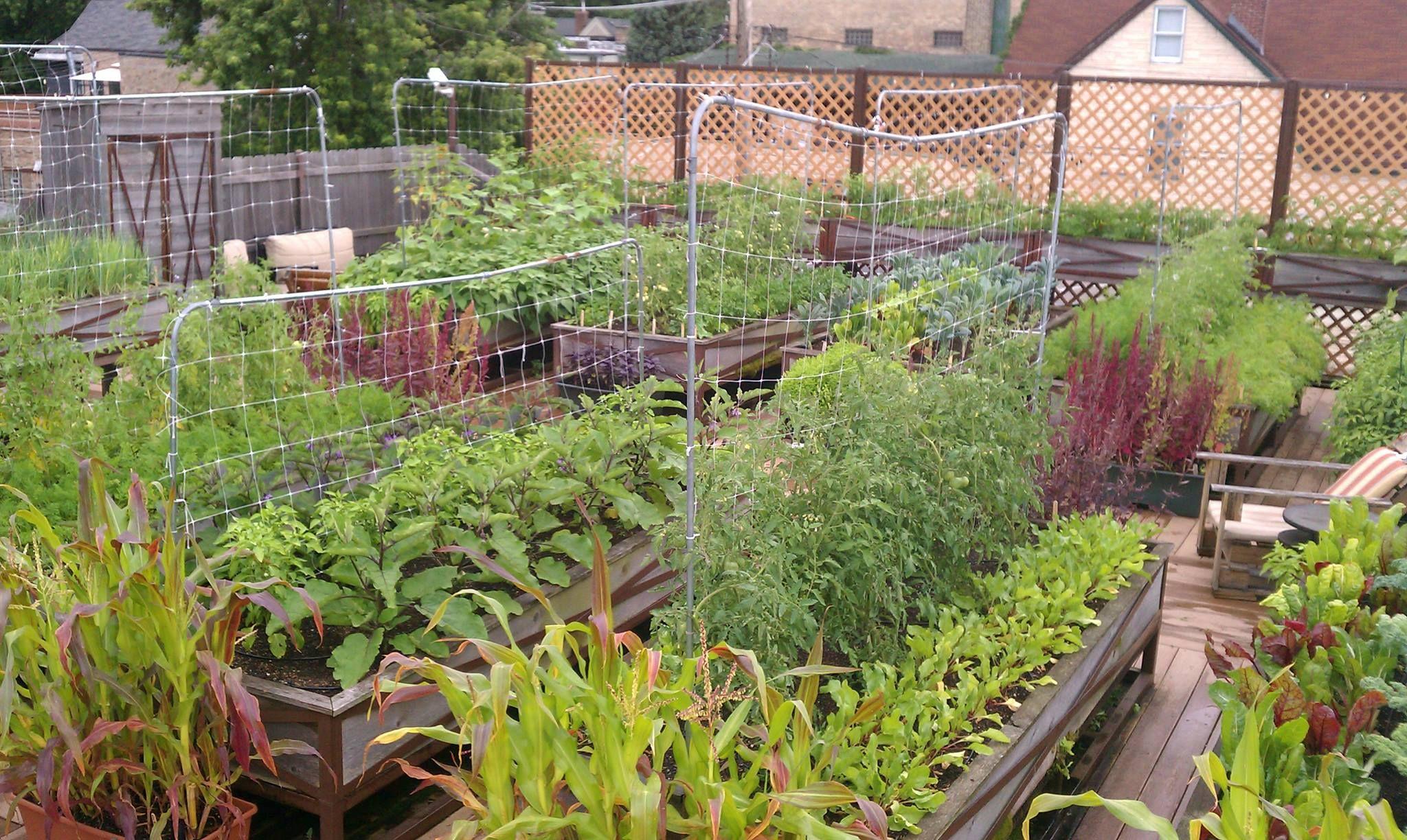 farm uncommon ground on 1401 devon ave chicago is the
