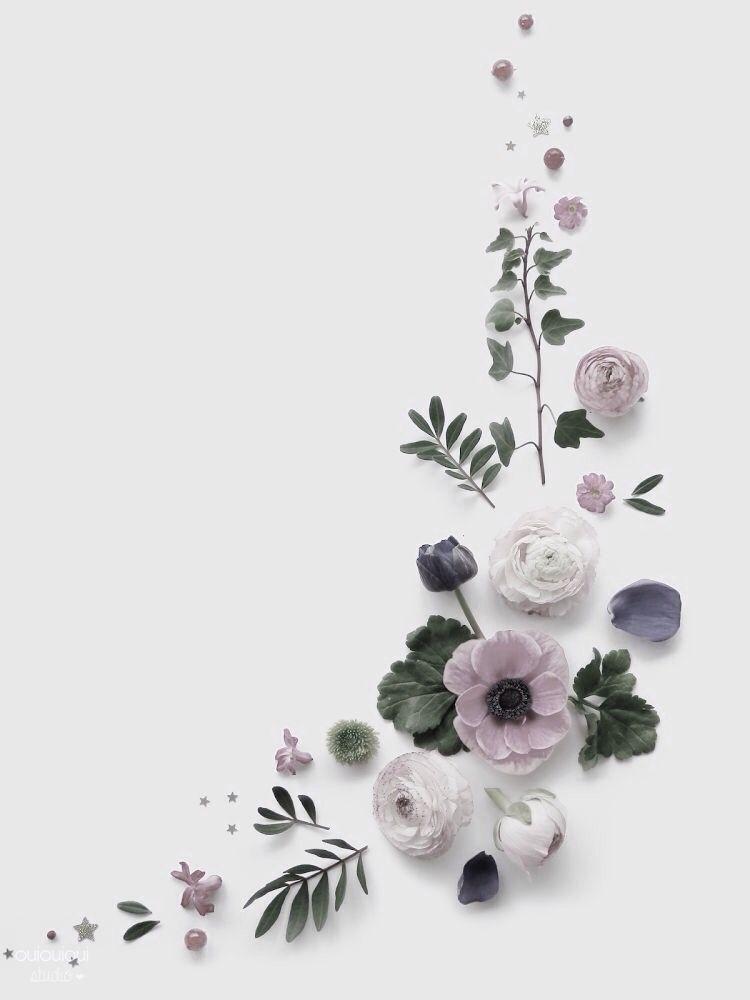 http://catelliyafloristjepara.blogspot.co.id/p/toko-bunga-jepara-bunga-kami-berada-di.htmlV