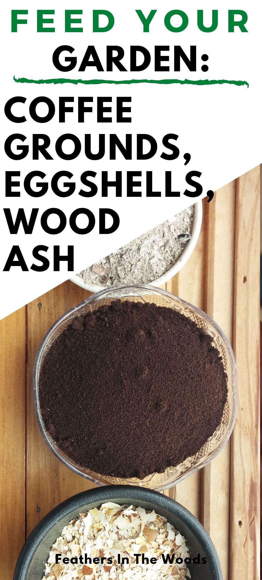 Feed Your Garden Coffee Grounds Eggshells Wood Ash Coffee Grounds Egg Shells Survival Gardening