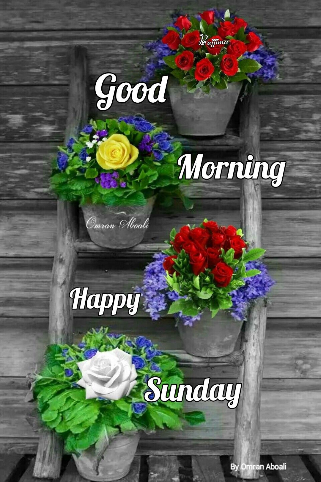 Pin By Kristel Bamps On Sunday Good Morning Happy Sunday Happy Sunday Morning Good Morning Flowers