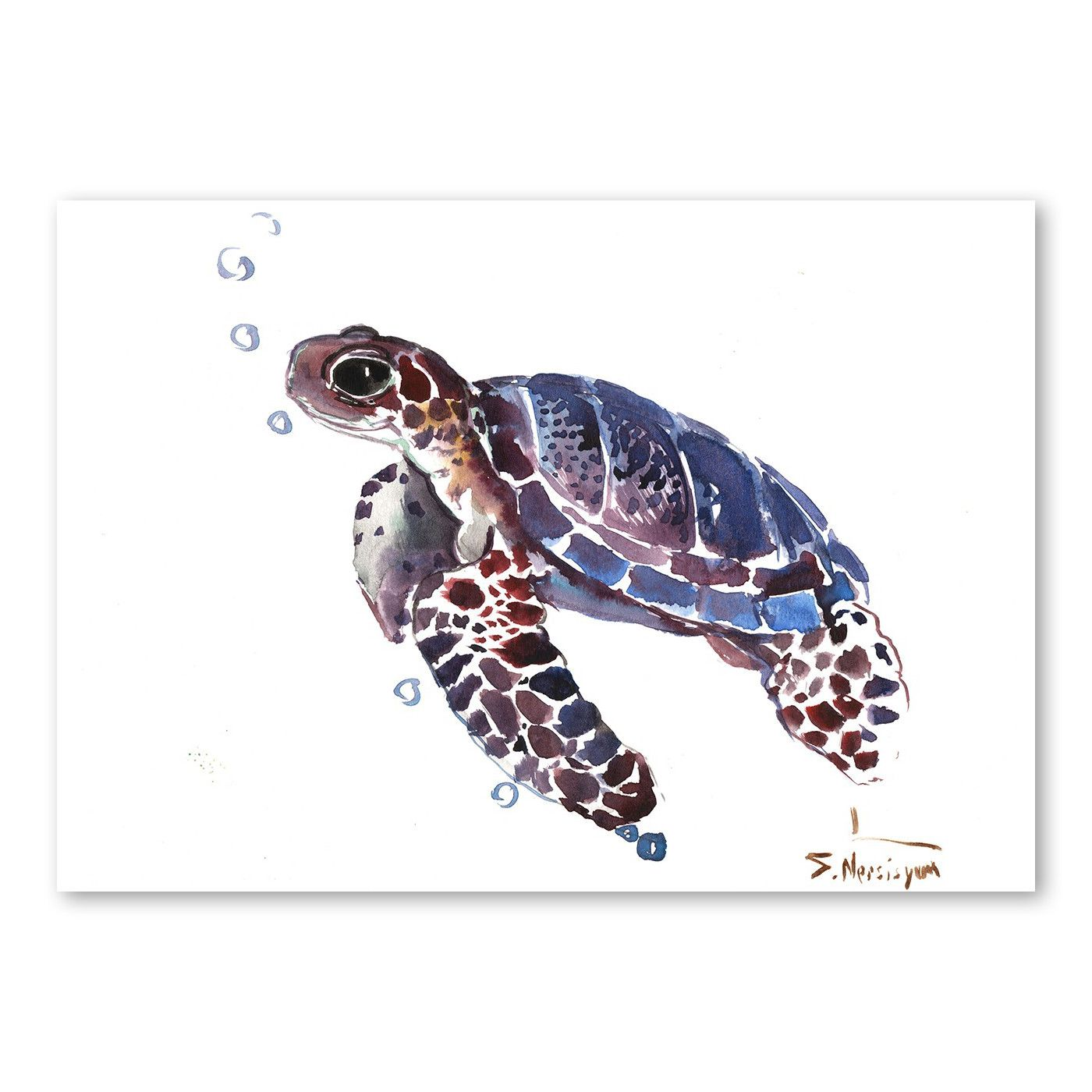 Tortoise by suren nersisyan framed watercolor painting print on canvas in blue brown