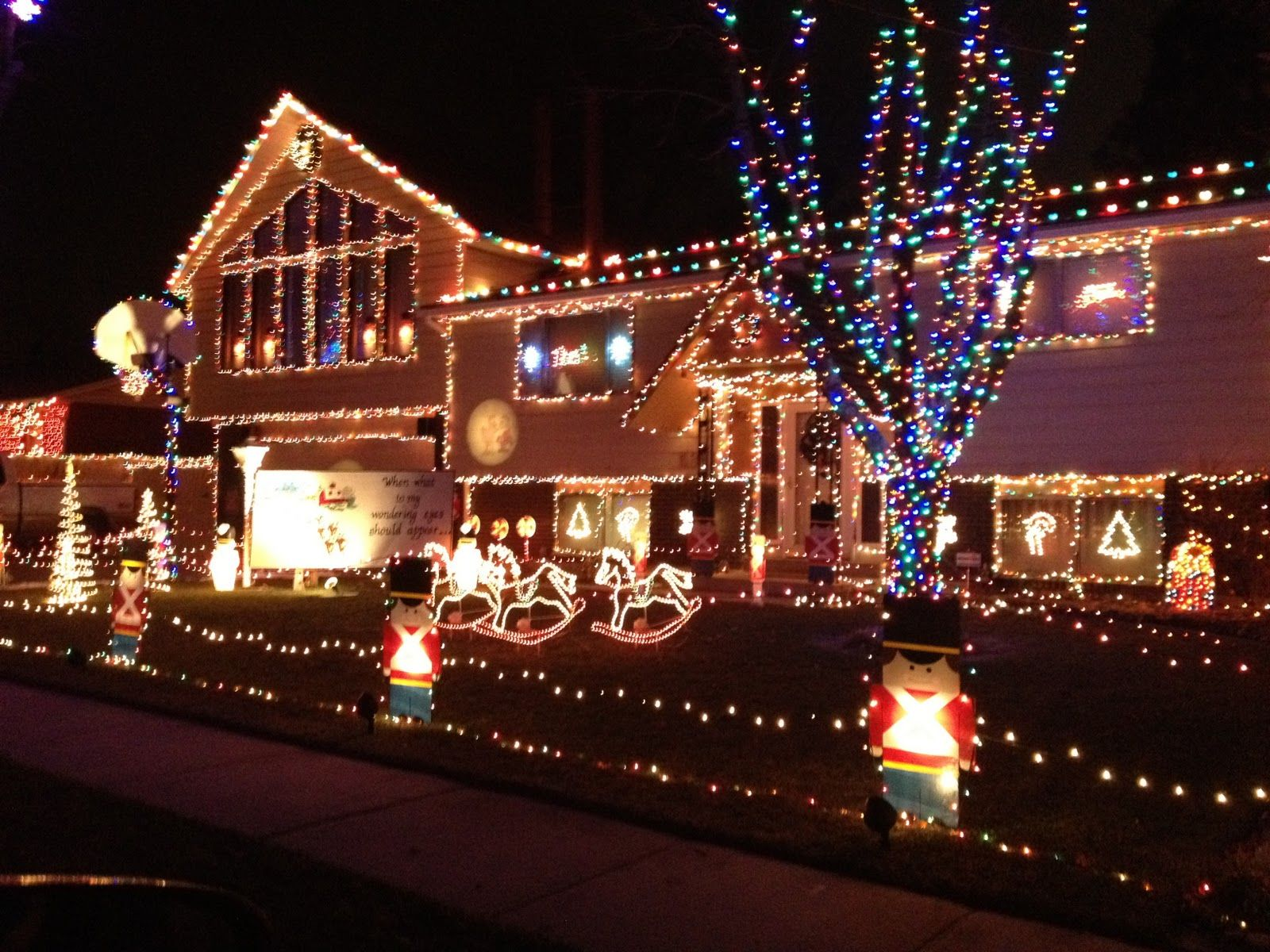 Pictures Of Christmas Lights Google Search Outdoor Christmas Tree Decorations Christmas House Lights Christmas Decorations For The Home
