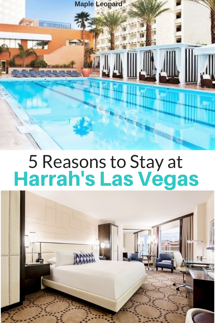 Prime Hotel Review Harrahs Las Vegas Best 0F Maple Leopards Interior Design Ideas Clesiryabchikinfo