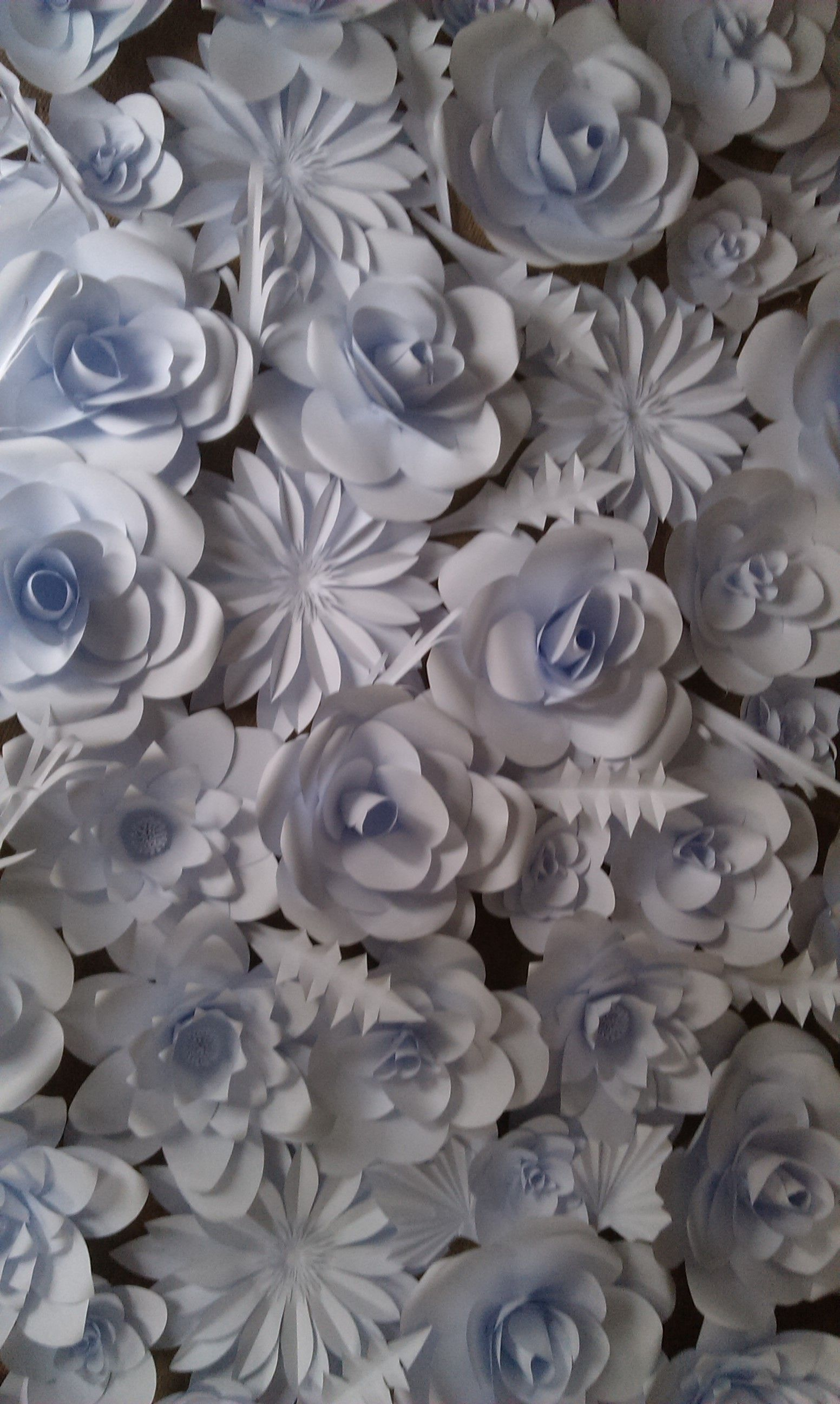 Wall of Paper Flowers ice white Catherineshinn  Paper Flowers
