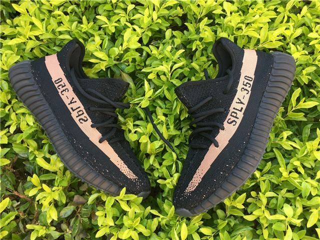 1e7f4790cfc Watch out for all the fake Adidas Yeezy Boost 350 Copper's, get a 34 ...