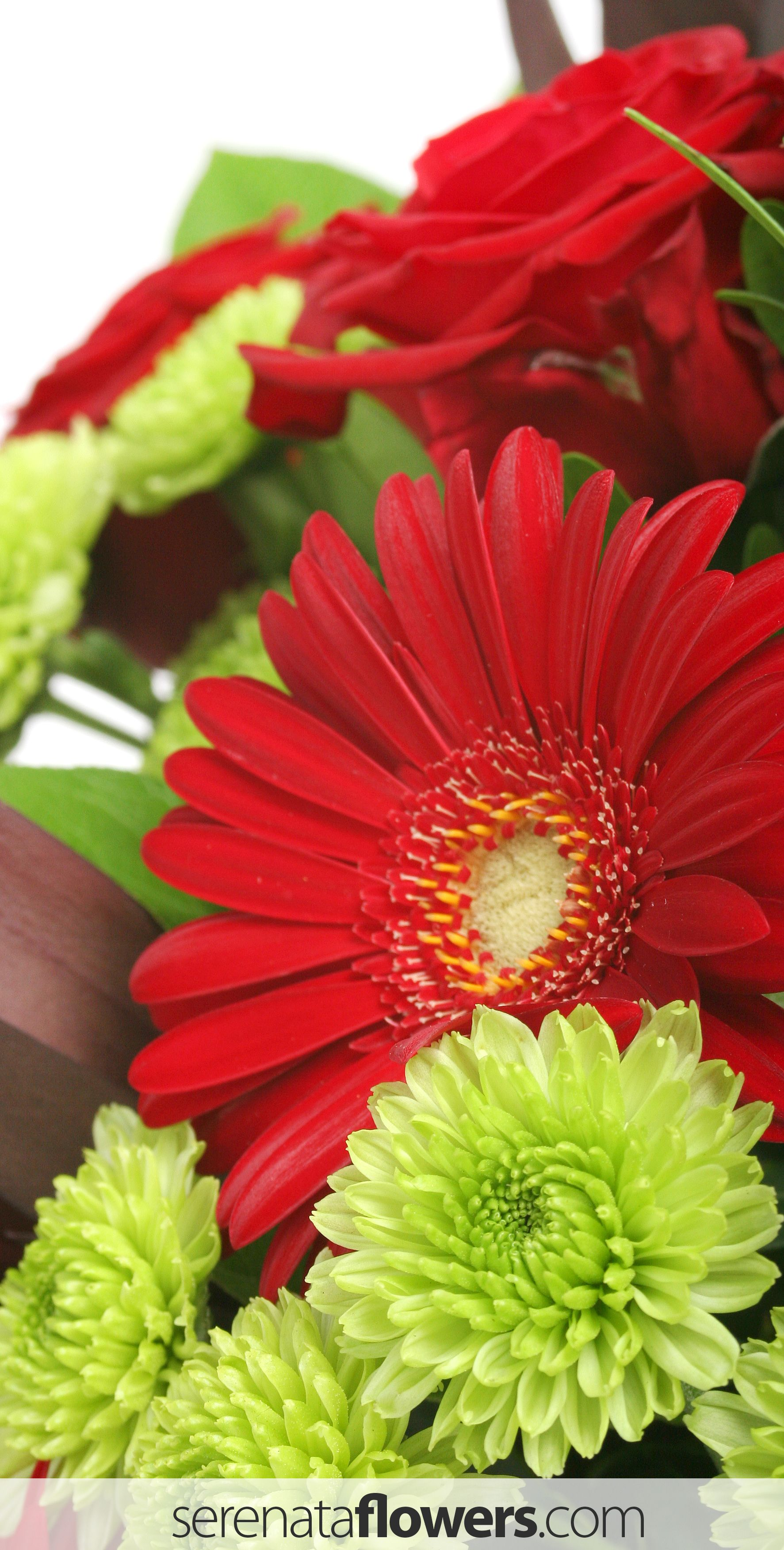 gerberas #flowers #bouquet #delivery #florist #orangeflowers ...