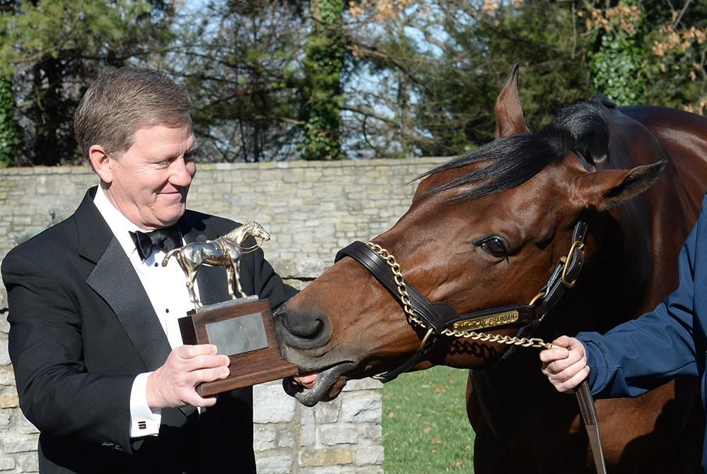 "American Pharoah ""accepts"" his Horse of the Year award."
