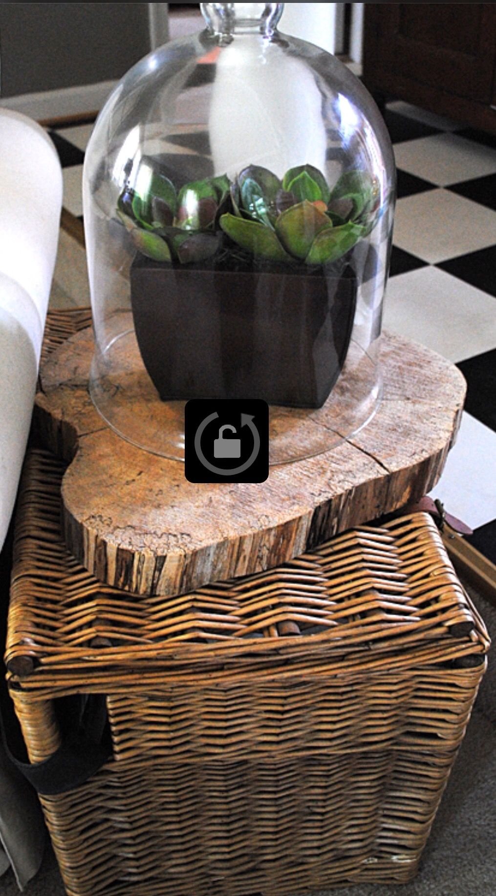 Use wood slice with dome over a plant Summer decor