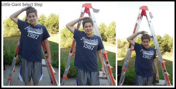 #ladder #outdoor #easytuse #diy #fall