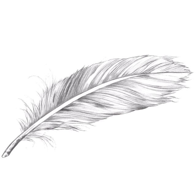 Tattoo that I am getting. May 12