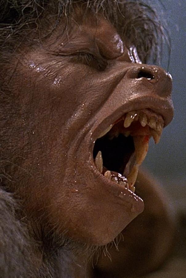 Regarder Le Loup Garou De Londres 1981 Film Complet En Francais American Werewolf In London Werewolf Universal Pictures