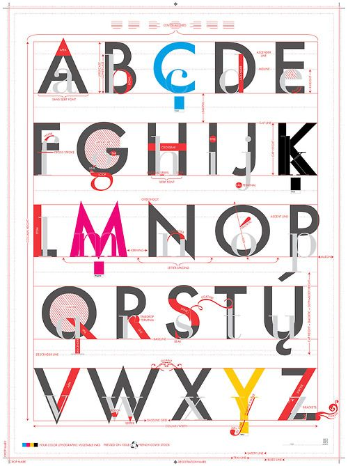 The Taxonomy Of Typography Poster