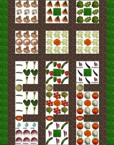 Plan potager en carre idees long re planters for Idee carre potager