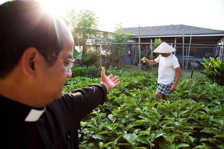 Urban Farming by the Vietnamese Community in New Orleans