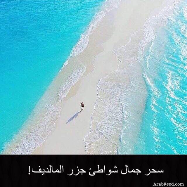 صباح الخير الصورة من جزر المالديف Places To Visit Places To Travel Visit Maldives