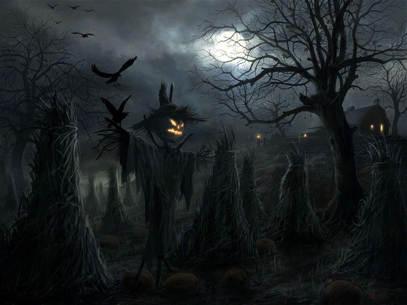 Creepy Crows Halloween Moon Radojavor Scarecrow Scary Widescreen Desktop  Mobile Iphone Android Hd Wallpaper And Desktop.