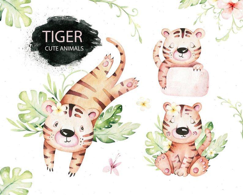 Watercolor Tiger Animals Tropic Clipart Digital Kids Baby Etsy Tigre Aquarelle Affiche Mignonne Clip Art
