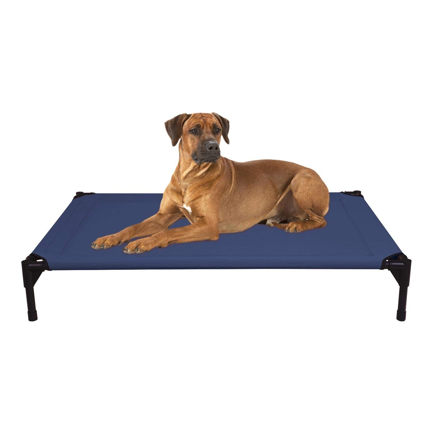 Veehoo Cooling Elevated Dog Bed For More Information Visit