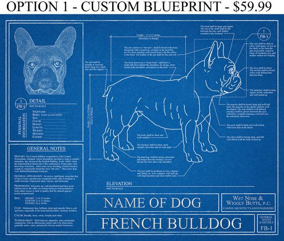 Personalized french bulldog blueprint french bulldog art french personalized french bulldog blueprint by wetnosewigglybutts malvernweather Images