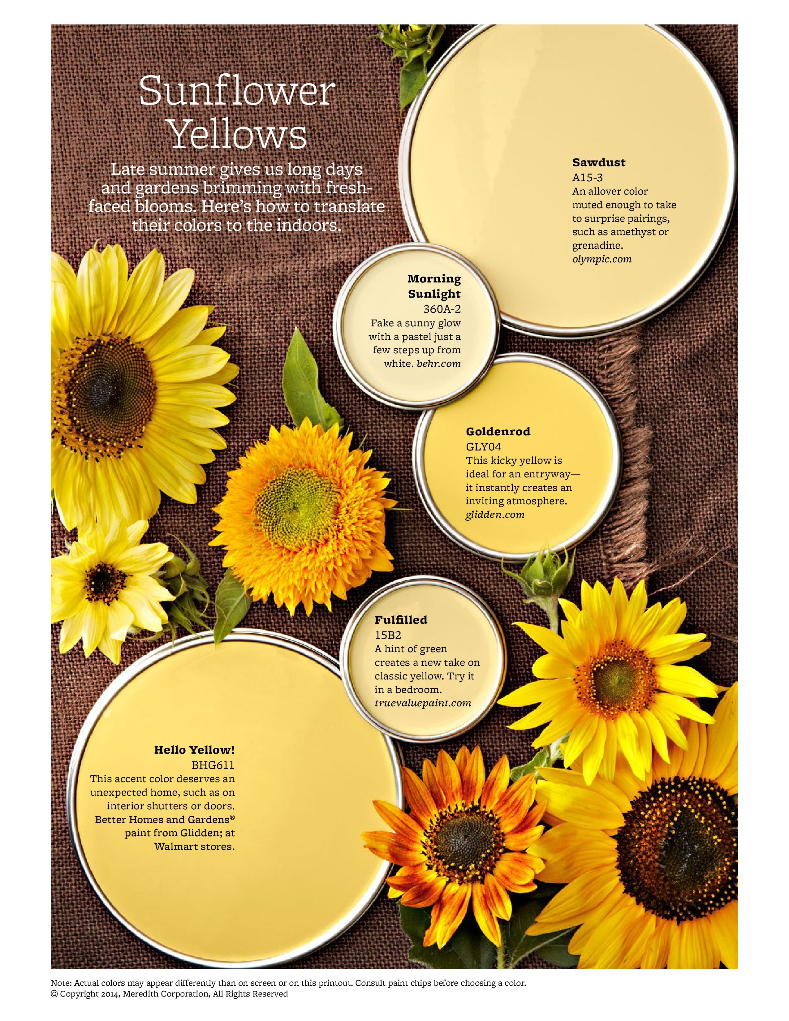 Sunflower Yellows from BHG.Was hoping to find the Creamy Golden on ...