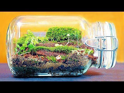 wie man ein gro es ewiges terrarium macht youtube basteln pinterest plantas para. Black Bedroom Furniture Sets. Home Design Ideas