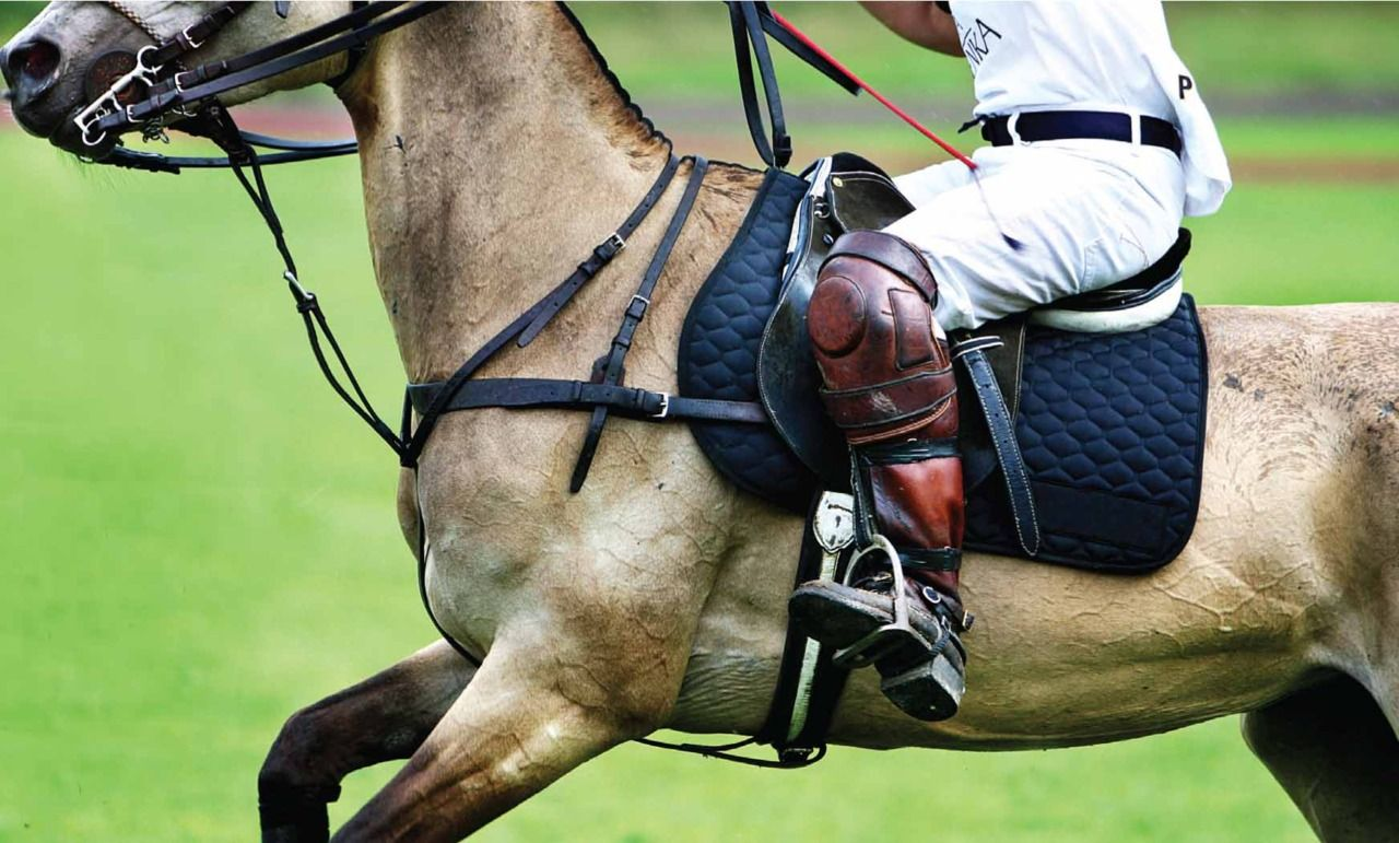 Pin by Heather // on preppy Classy sport, Equestrian