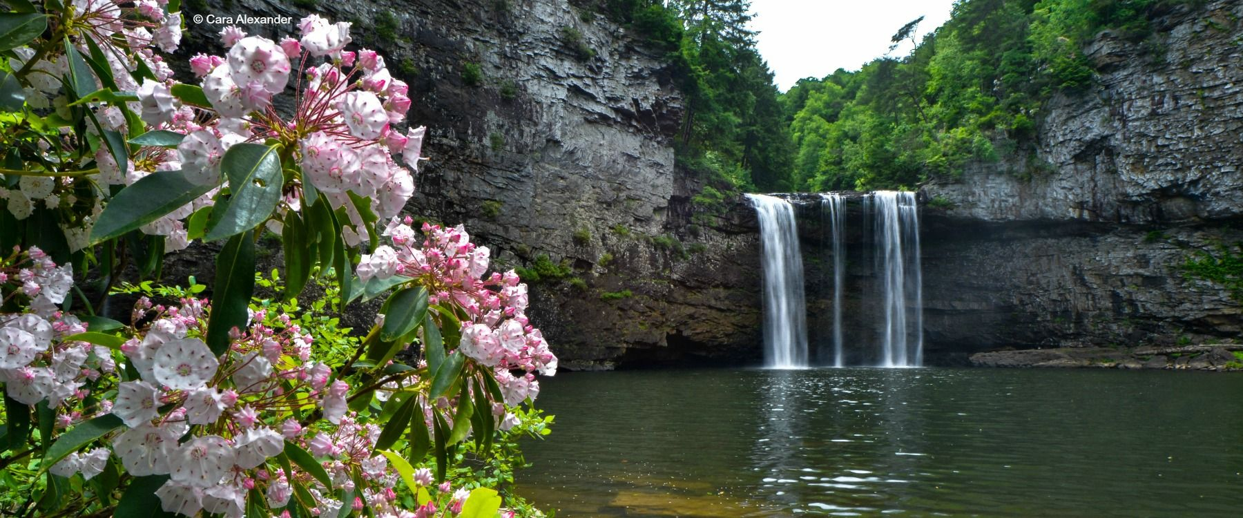 TN State Parks Vacation Packages