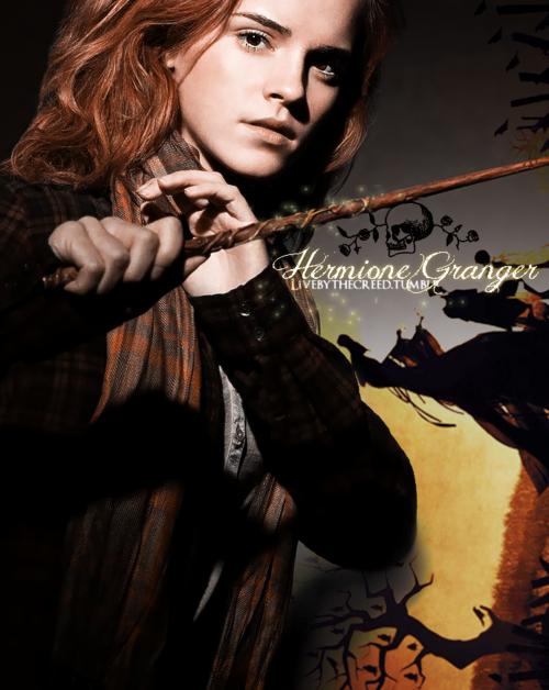 Hermione Granger Harry Potter Hermione Granger Harry Potter Hermione Harry James Potter