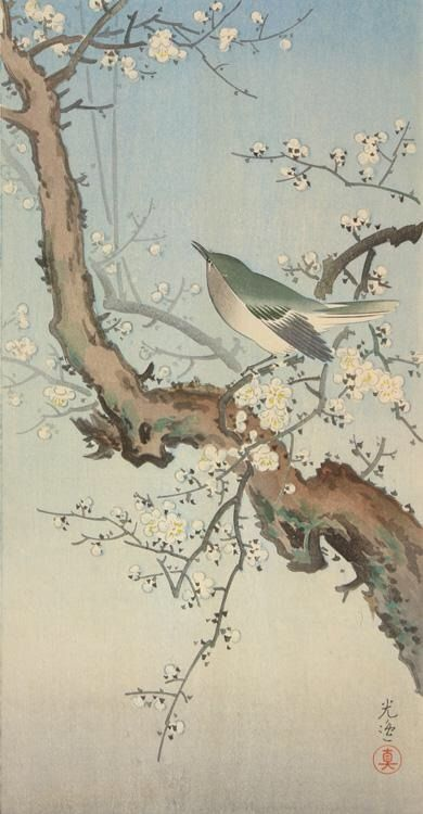 Image result for Japanese paintings and artwork Japanese nightingale and ume blossom
