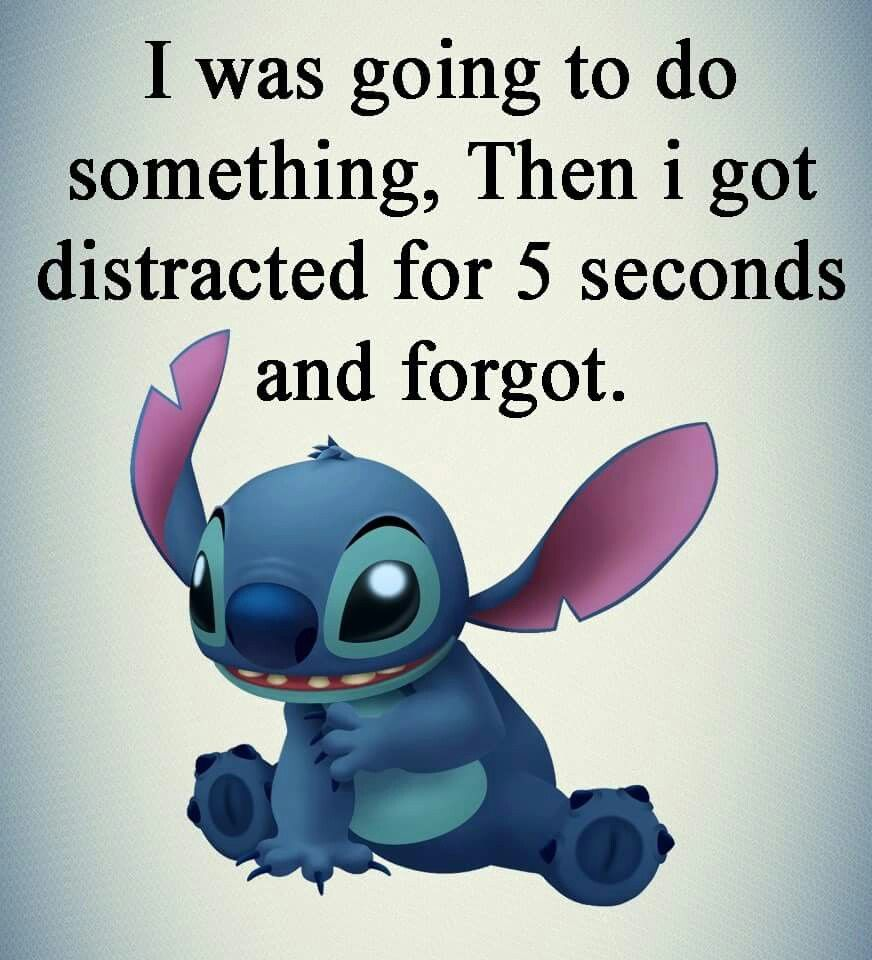 All The Dang Time Funny Disney Memes Lilo And Stitch Quotes Lilo And Stitch Memes