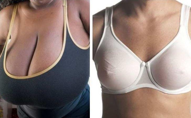 Recent boobie study