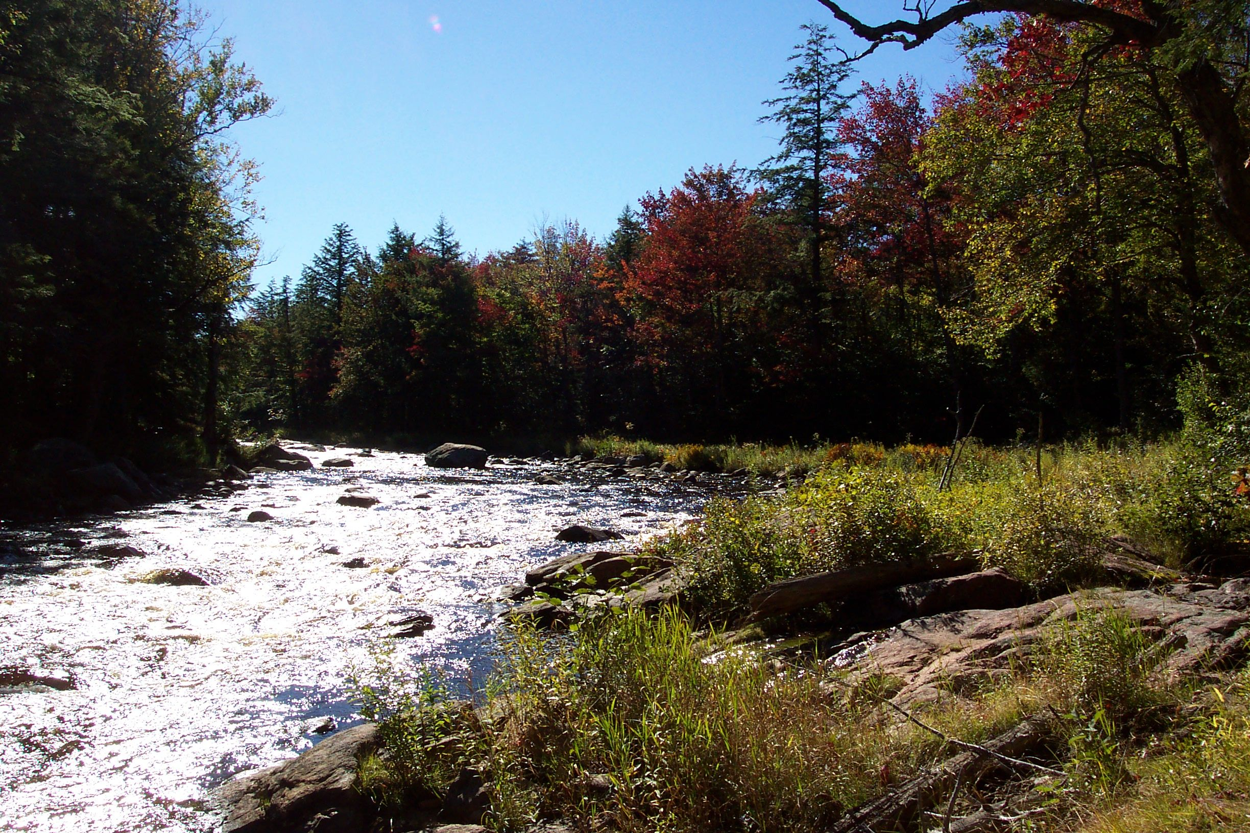 Oswegatchie River from Moore's trail