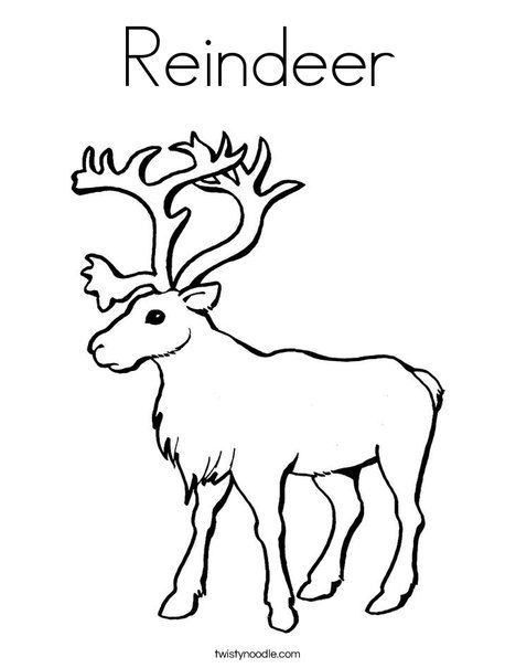 Reindeer Coloring Page - Twisty Noodle | Deer coloring ...