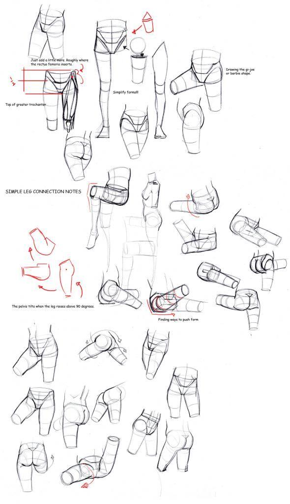 Cadera, cintura. | dibujos partes del cuerpo | Pinterest | Cintura ...