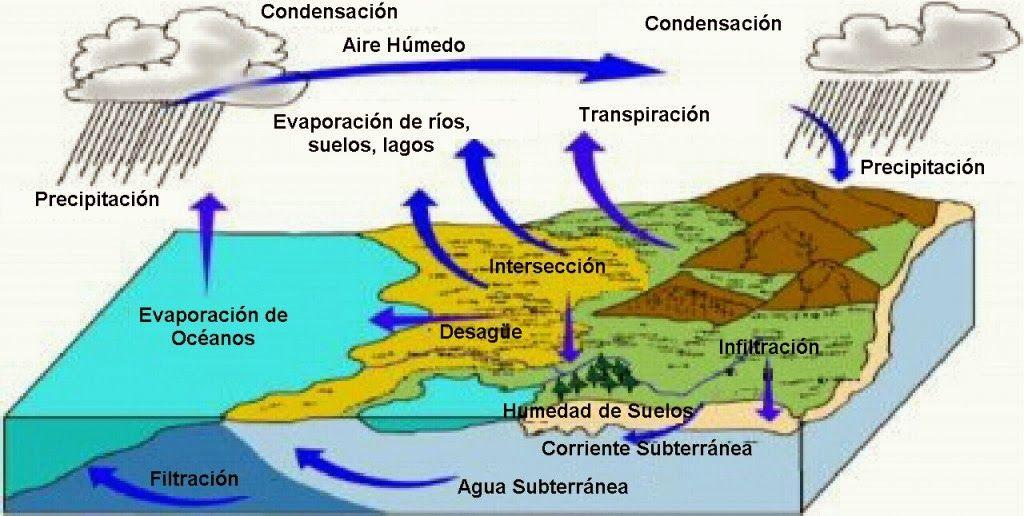 Blog De Los Niños El Ciclo Del Agua Ciclo Del Agua Ciclo Hidrologico Material Didactico Para Niños