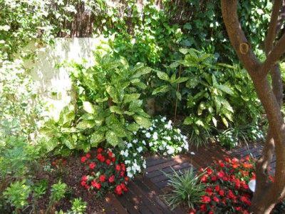 Ayuda en diseño jardín con plano - Página 2 - INFOJARDIN plantas