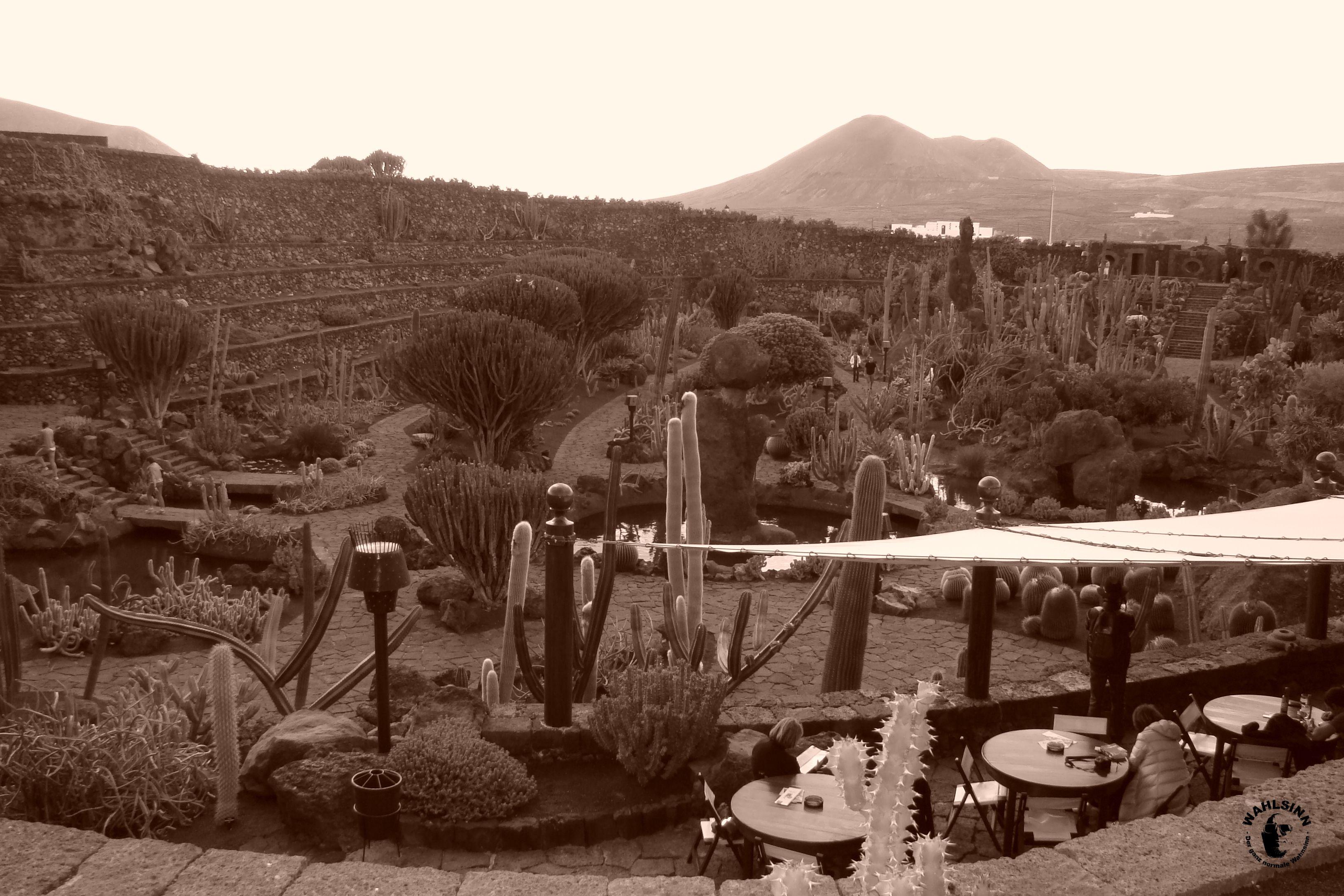Lanzarote - Cactus Garden / kaktus Garten