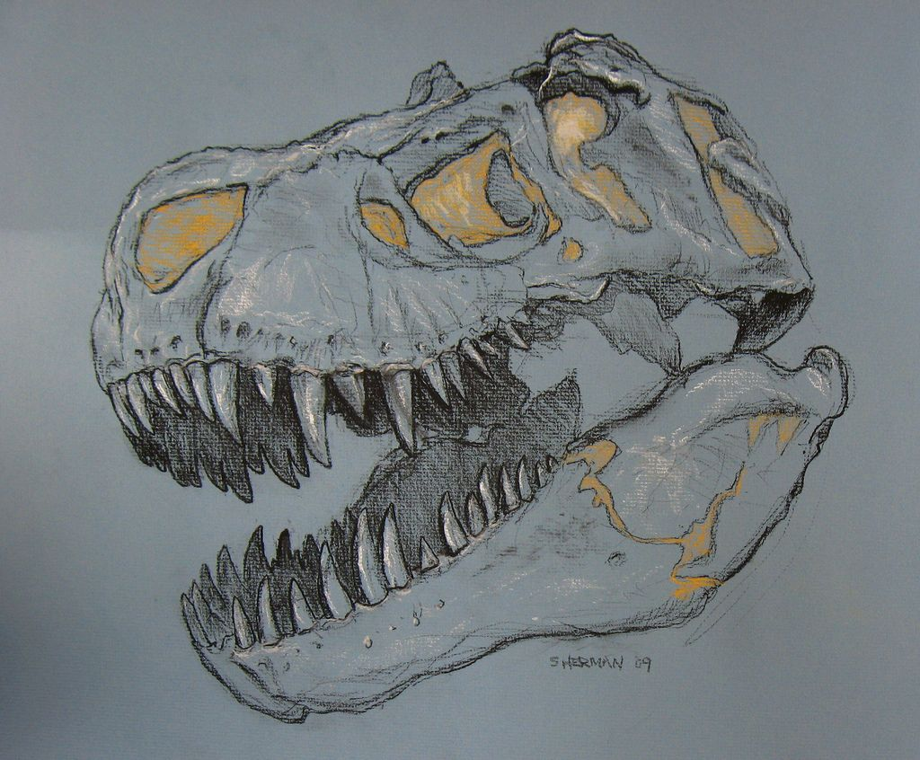 t rex skeleton tattoo - Google Search | stuff | Pinterest ...