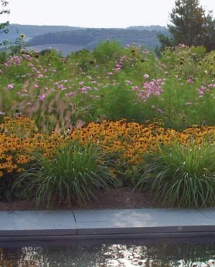 Designing With Grasses Finegardening Ornamental Grasses Fine Gardening Garden Design