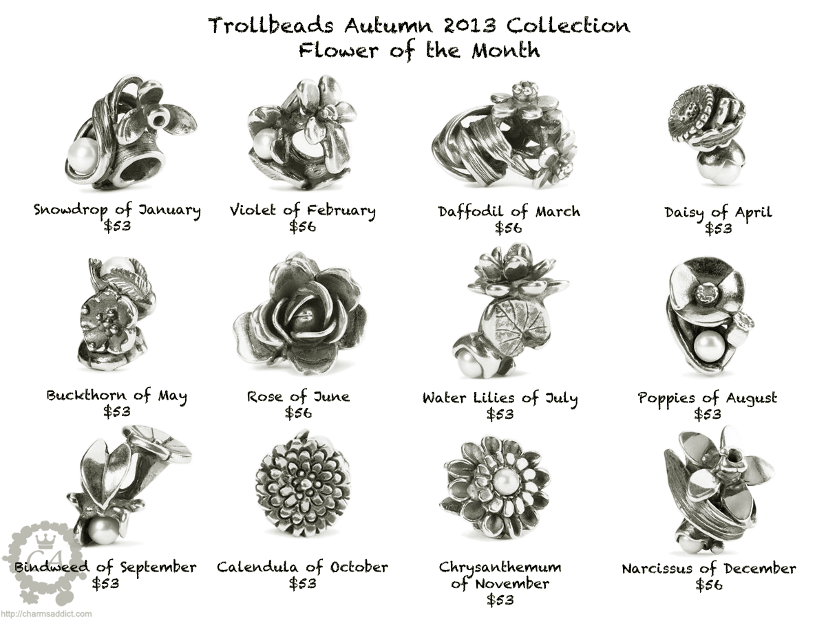 Birth flowers by month trollbeads flower of the month collection birth flowers by month dhlflorist Gallery