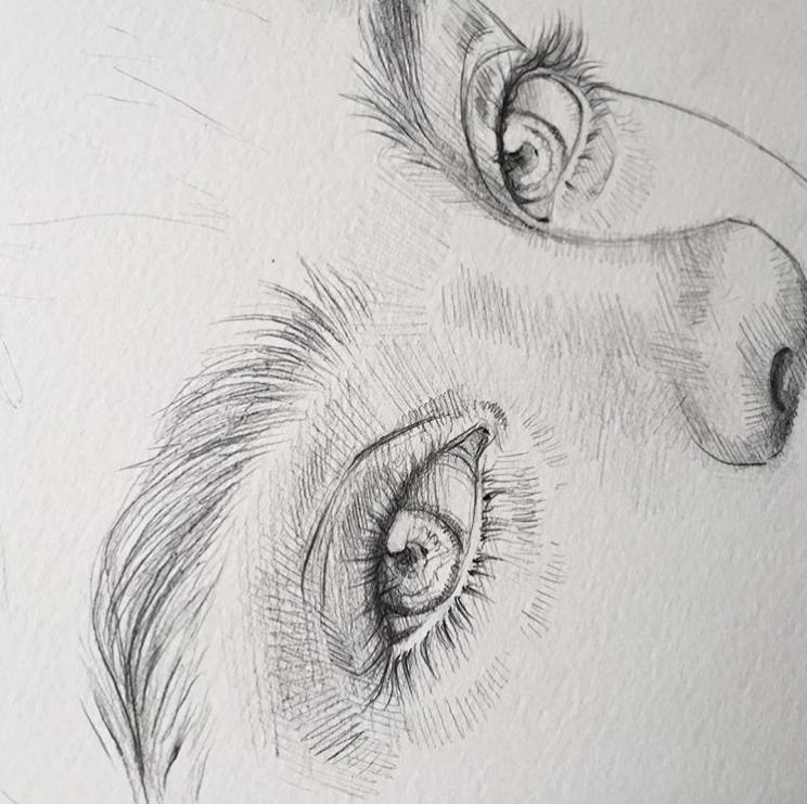 Zeichnen von Stiften – 37 Skizzieren von Kunstsets # Zeichnen # Bleistifte # Ski…