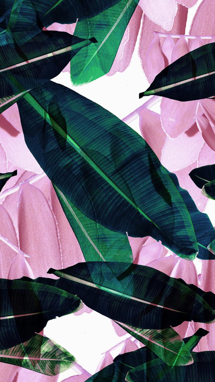 #iphone-wallpaper   Tumblr